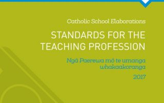 Professional Standards cover page
